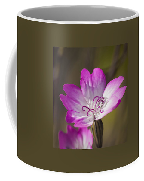 Viscaria Coffee Mug featuring the photograph Shocking Pink Chenille by Caitlyn Grasso