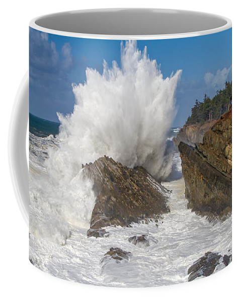 Coos Bay Coffee Mug featuring the photograph Shore Acres Finale by Patricia Davidson