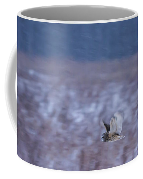 Short Eared Owl Coffee Mug featuring the photograph Short Eared Owl Hunting 3 by Tracy Winter