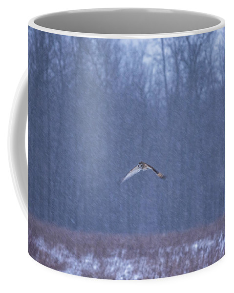 Short Eared Owl Coffee Mug featuring the photograph Short Eared Owl In Motion by Tracy Winter