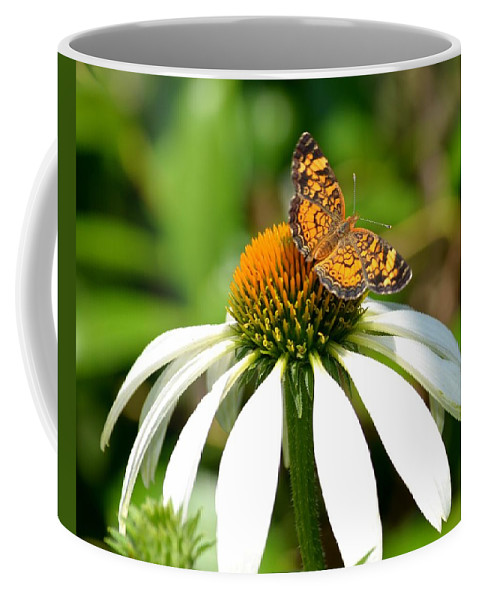Showoff Coffee Mug featuring the photograph Show Off by Maria Urso