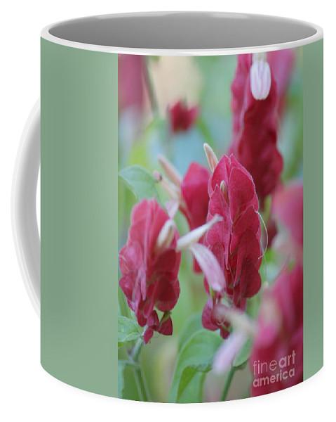 Shrimp Plant Coffee Mug featuring the photograph Shrimp Plant by Carol Groenen