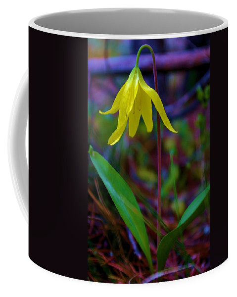 Flowers Coffee Mug featuring the photograph Shy Beauty by Jeff Swan