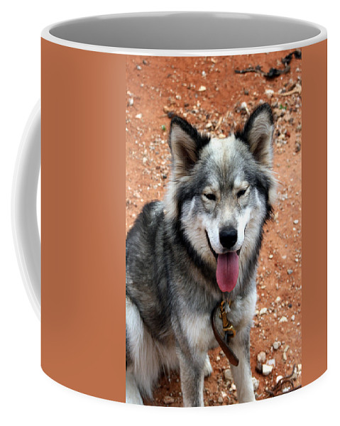 Discount Codes Coffee Mug featuring the digital art Siberian Husky With Blue And Brown Eyes by Doc Braham