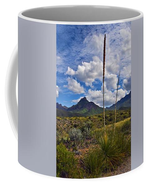 Siblings Coffee Mug featuring the photograph Siblings by Skip Hunt