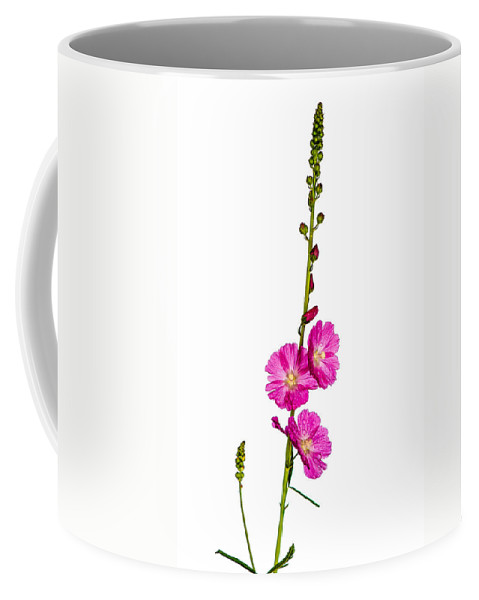 Annual Coffee Mug featuring the photograph Sidalcea 2 by Mark Llewellyn