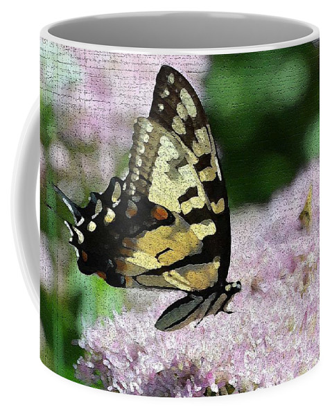 Butterfly Coffee Mug featuring the photograph Side Line 2 by Judy Wolinsky