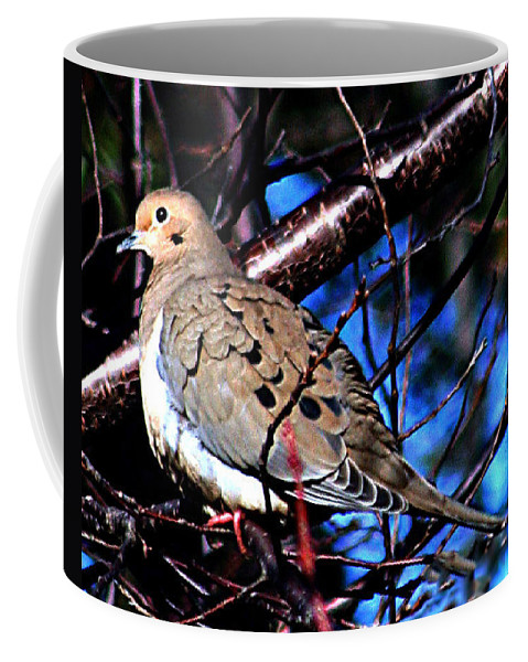 Dove Coffee Mug featuring the photograph Silent Dove Sm by Lesa Fine