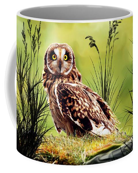 Owls Coffee Mug featuring the photograph Silent Eyes by Lyriel Lyra