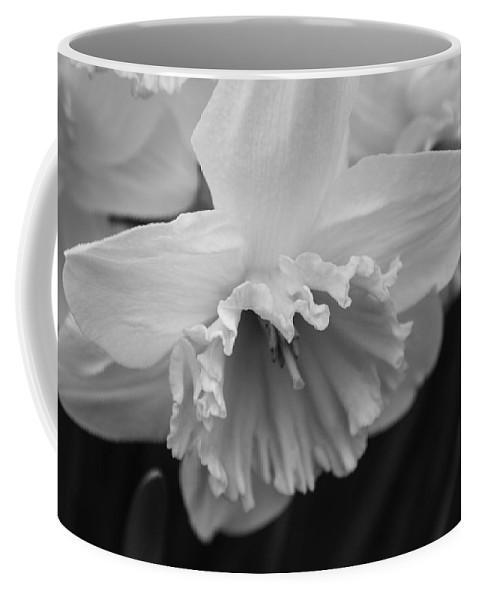 Daffodil Coffee Mug featuring the photograph Simplicity by Arlene Carmel