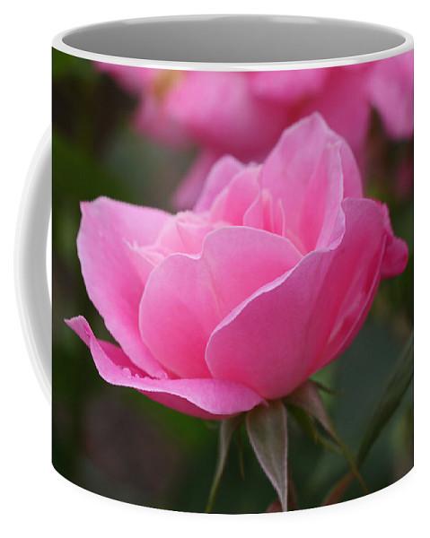 Simplicity Rose Coffee Mug featuring the photograph Simplicity Floribunda Rose by Allen Beatty