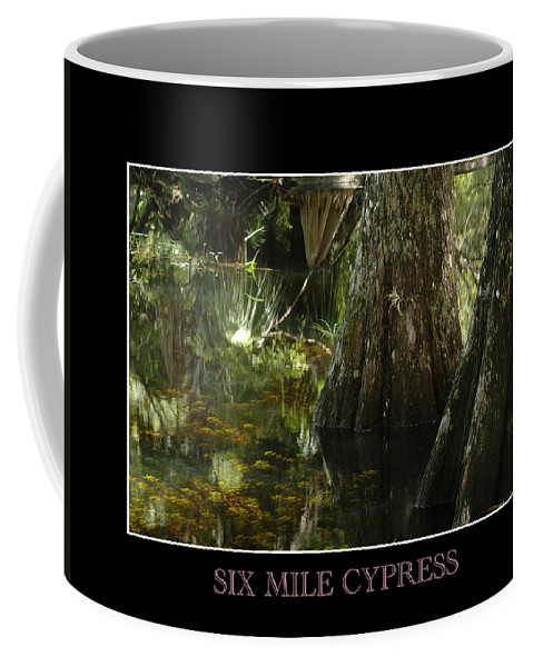 Cypress Coffee Mug featuring the photograph Six Mile Cypress Fort Myers Florida by David Weeks