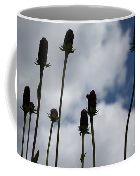 Sky Coffee Mug featuring the photograph Sky Flowers by Brandi Maher