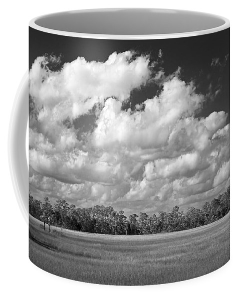 Florida Coffee Mug featuring the photograph Sky Over St. Marks by Bill Chambers