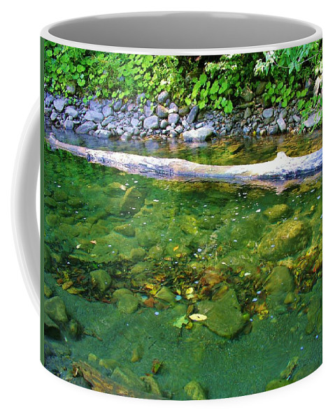 Brook Coffee Mug featuring the photograph Slow Moving Sream by Sherman Perry
