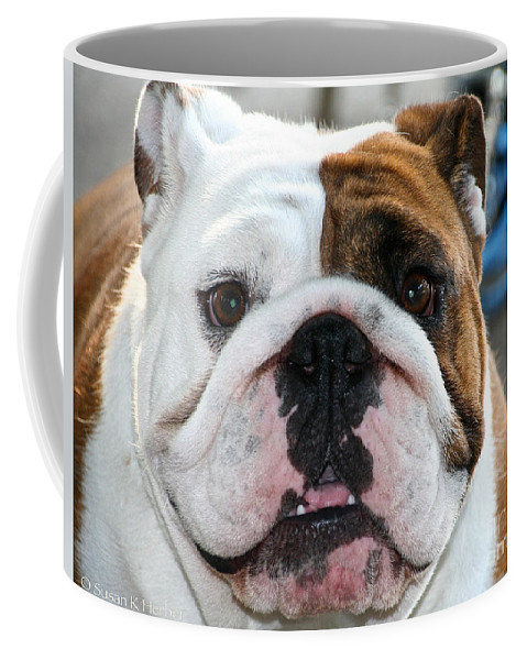 Animal Coffee Mug featuring the photograph Smashface by Susan Herber