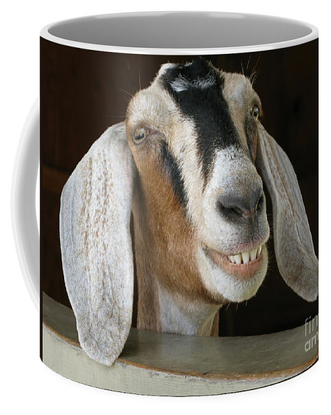 Goat Coffee Mug featuring the photograph Smile Pretty by Ann Horn