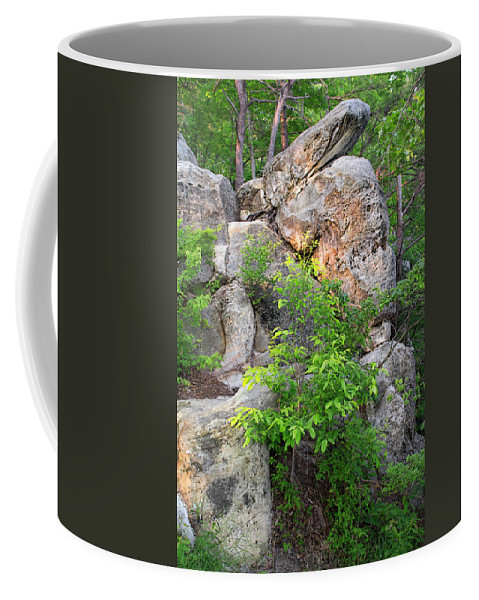 Cumberland Gap National Historical Park Coffee Mug featuring the photograph Snake Rock by Mary Almond