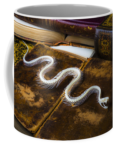 Snake Coffee Mug featuring the photograph Snake Skeleton And Old Books by Garry Gay