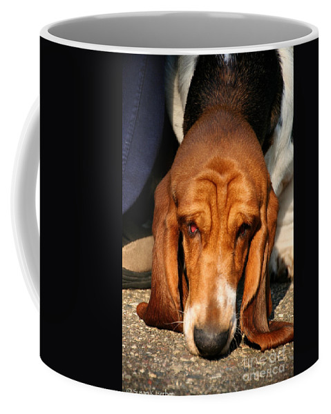 Animal Coffee Mug featuring the photograph Sniffer by Susan Herber