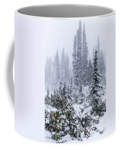 Mountain Ash Coffee Mug featuring the photograph Snow Covered Mountain Ash by Sharon Seaward