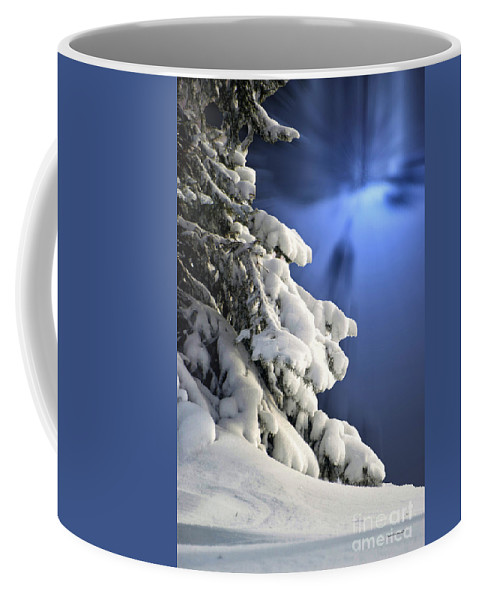 Tree Coffee Mug featuring the photograph Snow Covered Tree Branches by Thomas Woolworth