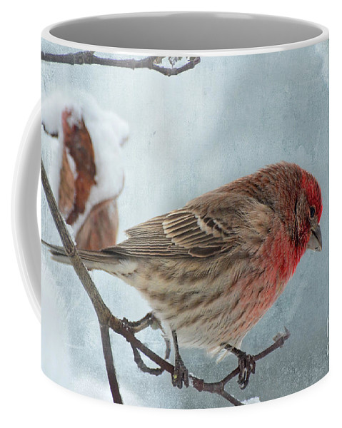 Nature Coffee Mug featuring the photograph Snow Day Housefinch With Texture by Debbie Portwood