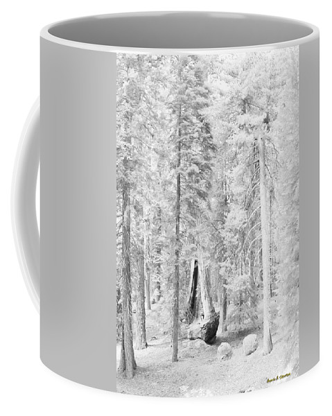 Sequoia Coffee Mug featuring the photograph Snow Impressions by Angela Stanton