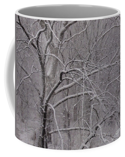 Bridge Coffee Mug featuring the photograph Snow In The Trees At Bulls Island by Christopher Plummer