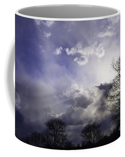 Tree Coffee Mug featuring the photograph Snow Is In The Air by Joe Geraci