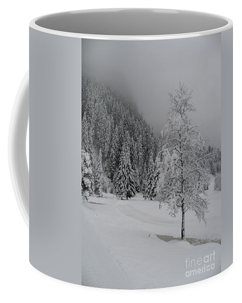 Snow Coffee Mug featuring the photograph Snow Tree by Christiane Schulze Art And Photography
