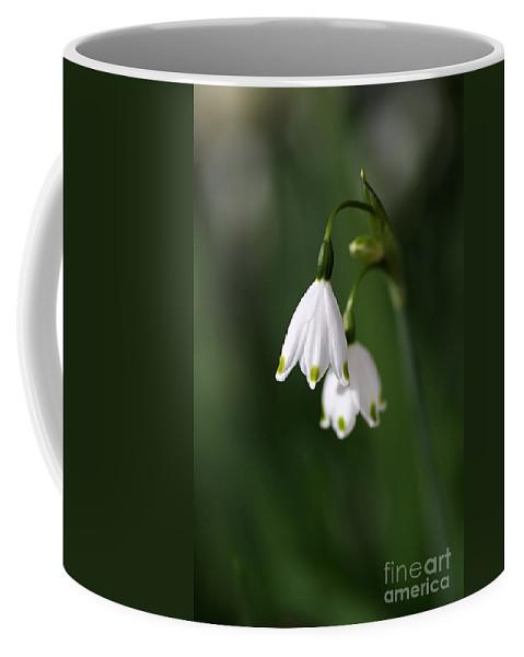 Snowdrops Coffee Mug featuring the photograph Snowdrop Duet by Joy Watson
