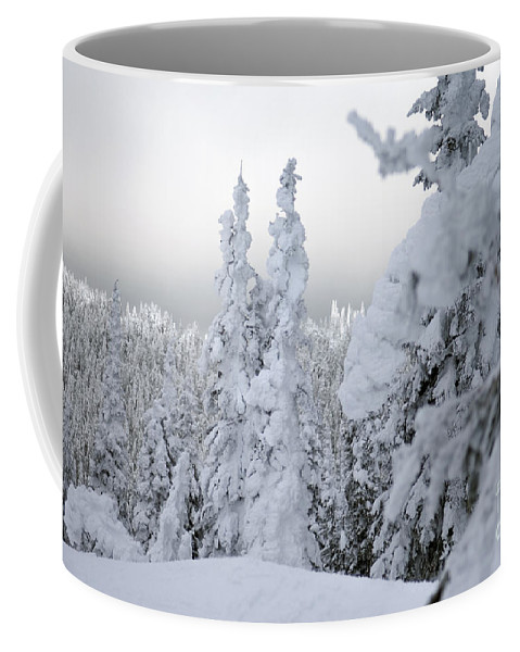 Snow Ghost Coffee Mug featuring the photograph Snowed In by Wildlife Fine Art