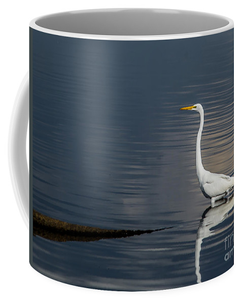 Snow Coffee Mug featuring the photograph Snowy Egret by Scott Hervieux