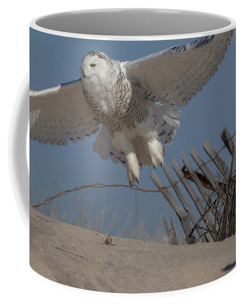 Nature Coffee Mug featuring the photograph Snowy In Flight by Steve Gravano