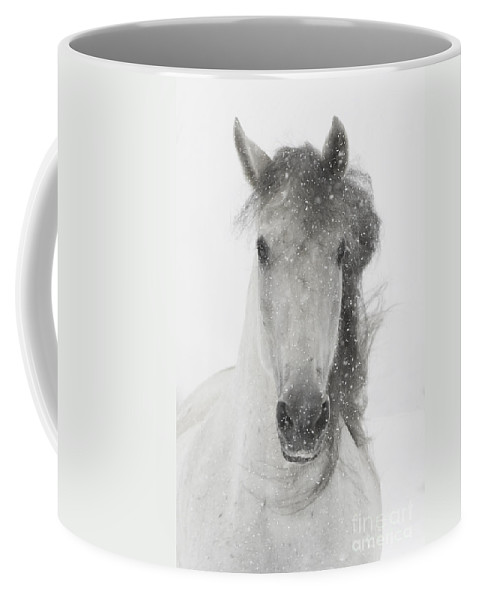 Andalusian Coffee Mug featuring the photograph Snowy Mare by Carol Walker