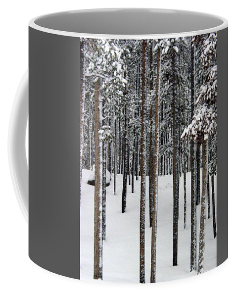 Winter In Woods Coffee Mug featuring the photograph Snowy Walk In The Woods IIi Grand Lake Co by Jacqueline Russell