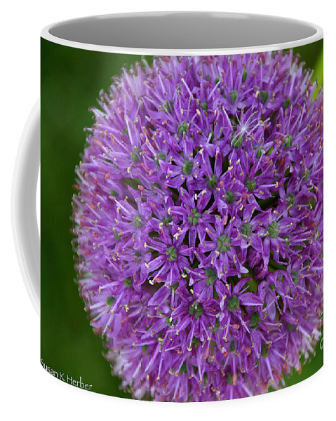 Flower Coffee Mug featuring the photograph So Circular by Susan Herber