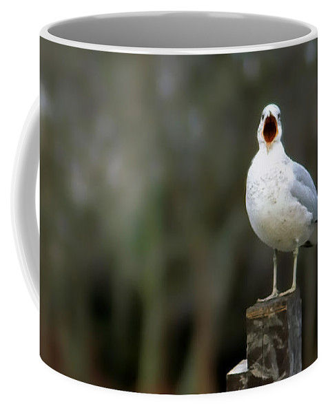 Seagulls Coffee Mug featuring the photograph So Much To Talk About by Geoff Crego