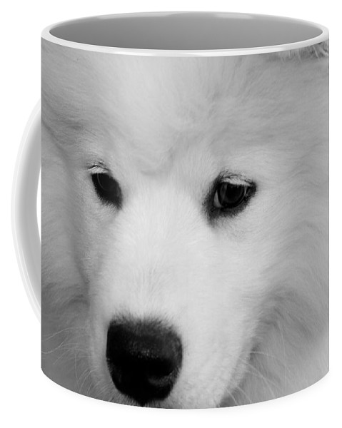 Samoyed Coffee Mug featuring the photograph Soft And Overwhelming Beauty.... by Fiona Kennard