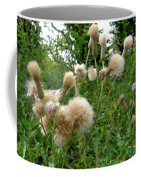 Nature Coffee Mug featuring the photograph Soft Nature by Denise Mazzocco