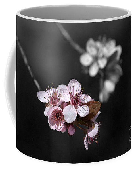 Selective Color Coffee Mug featuring the photograph Soft Pink Blossom by Joy Watson