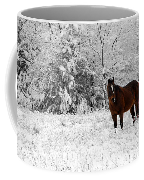 Snow Coffee Mug featuring the photograph Solitude by Jessica Wakefield