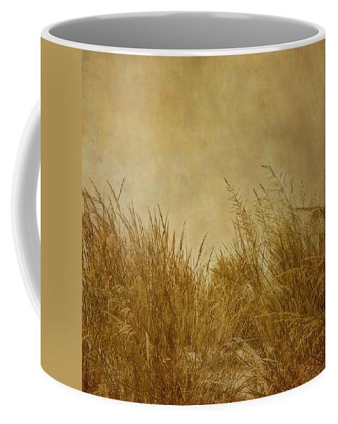Beach Coffee Mug featuring the photograph Solitude by Kim Hojnacki