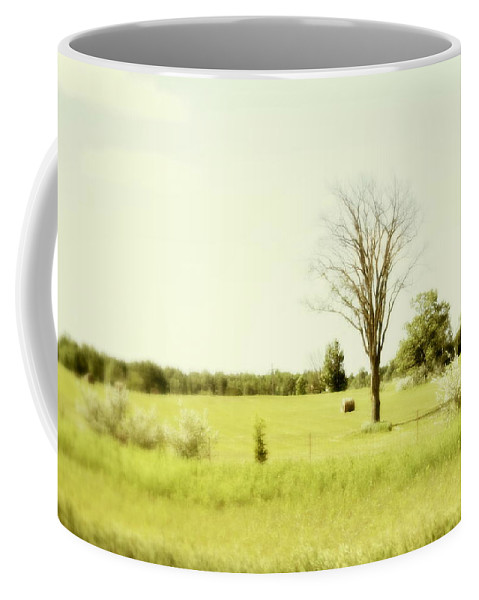 Trees Coffee Mug featuring the photograph Solitude by Marysue Ryan