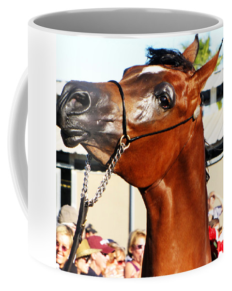 Horse Coffee Mug featuring the photograph Somebody Bet On The Bay by C H Apperson