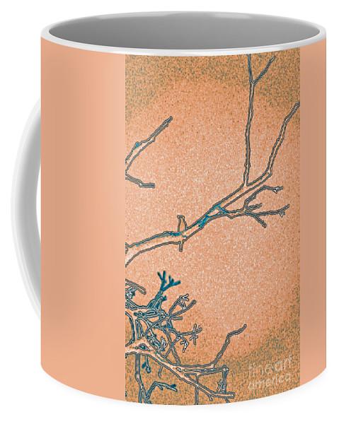 First Star Art Coffee Mug featuring the photograph Songbird Peach by First Star Art