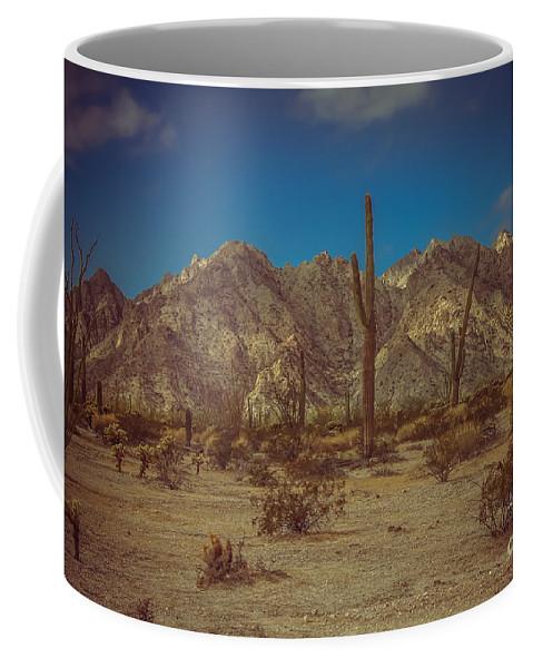 Arizona Coffee Mug featuring the photograph Sonoran Desert by Robert Bales
