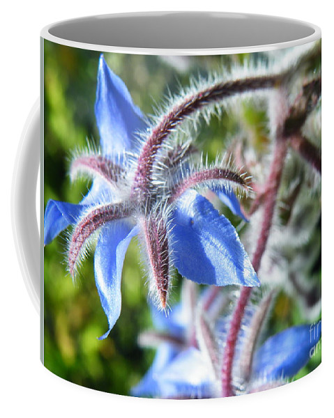 Blues Coffee Mug featuring the photograph Source Of The Blues by Brian Boyle