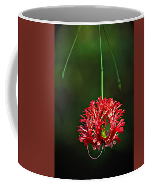 Flower Coffee Mug featuring the photograph Southern Belle by Steve Harrington